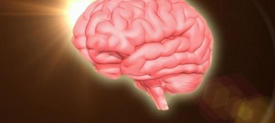 脳のアップデート