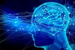 脳の活性化・ブレインヒーリング